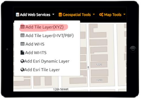 Raster Tile Server (XYZ or TMS)